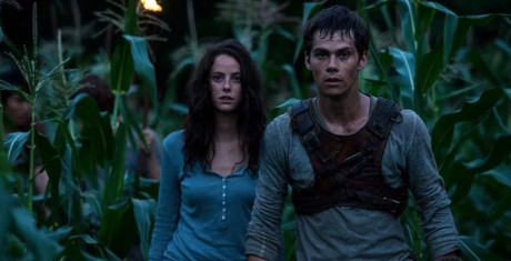 The-Maze-Runner_7-990x505-990x505