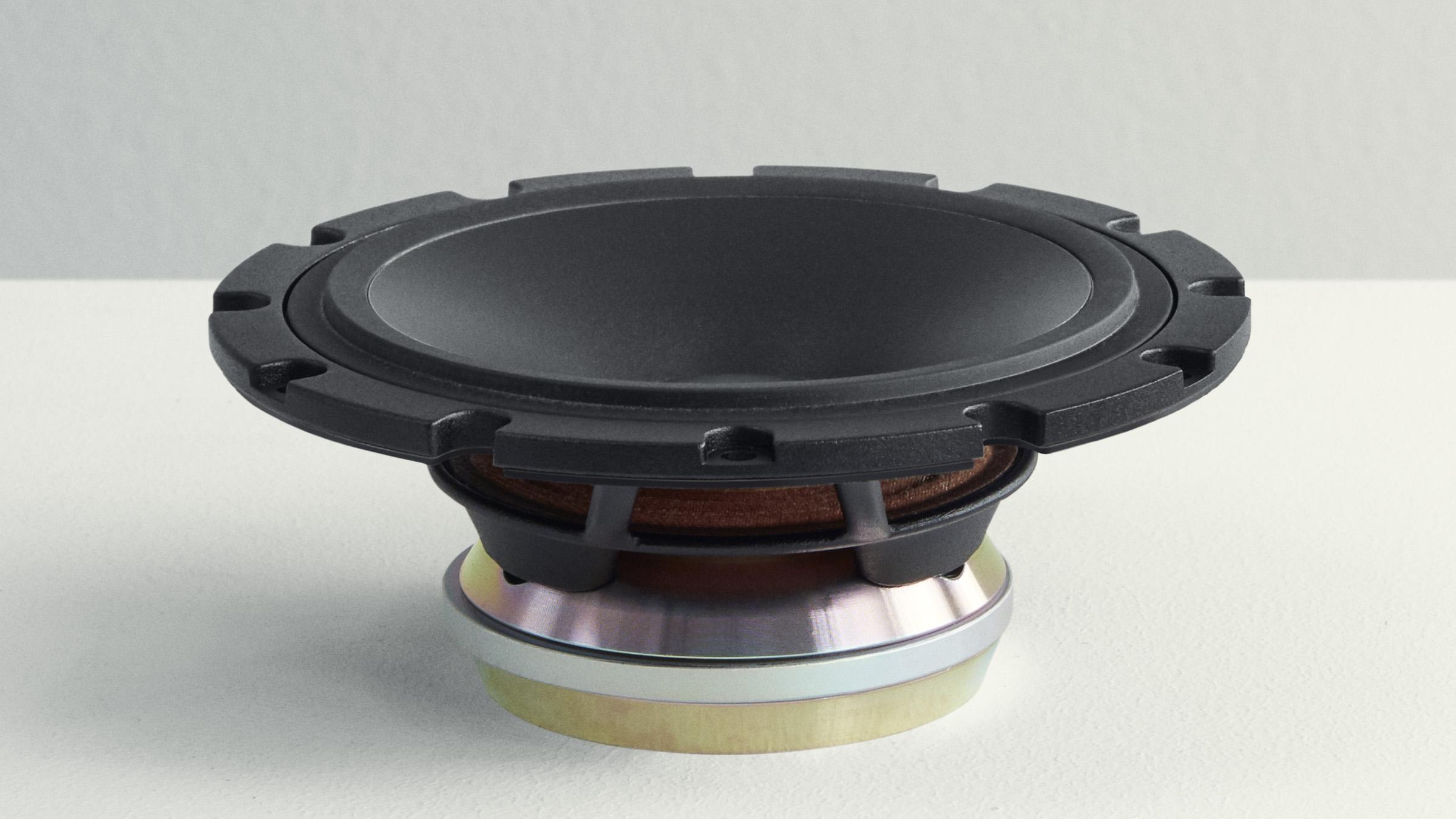 Speaker part - Dynaudio Confidence midrange with Horizon