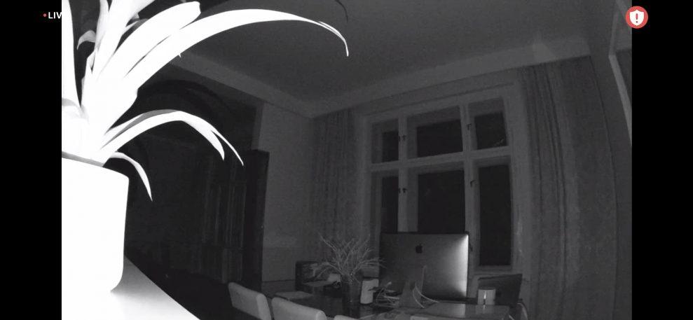 Arlo_mørkt